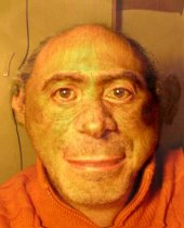 Stefano ape morphed